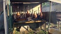 Hautes-Alpes : A Saint Auban d'Oze, la population a doublé pour la fête du village