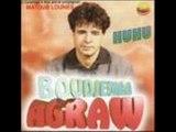 Agraw 1985 instrumental