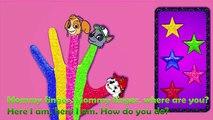 Niños colores cara familia dedo para Niños Aprender vivero jugar rimas sonreír niños pequeños doh
