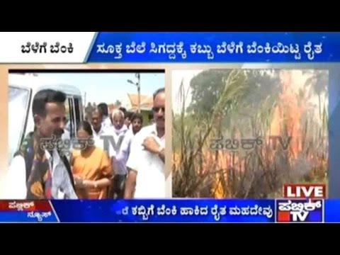 Mandya: Frustrated Of Getting Unsatisfactory Returns, Farms Burns Down Farm