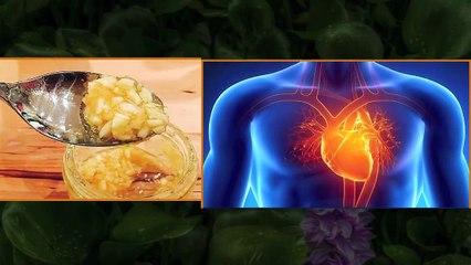 Health Benefits of Garlic & Honey
