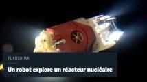 Fukushima : un robot cherche le combustible à l'origine de la pollution
