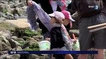 La pêche dans la baie du Mont-Saint-Michel : le rendez-vous des petits et grands
