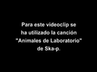 Ska-p - animales de laboratorio