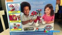 Paw Patrol Zoomer Marshall interivo Pup Zoomer Kitty Bigodes brinquedos para as criança