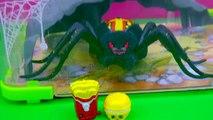En ataque jaula de Hábitat en en mascotas temporada tiendas araña Visitar salvaje Parque zoológico Cook 4 interive