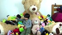 Géant ourson ours saut monde le plus grand chien et ours peluche la famille amusement Jeu de