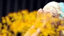 Taekwondo fille Elsa Anna marionnettes animation de marionnettes Frozen animateur dolahyi TV