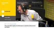 Nationalisation STX : réaction de Jean-Marc Janaillac, PDG d'Air France