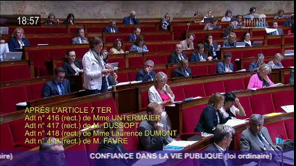 MODIFICATION DU CODE ELECTORAL-FRAUDE FN- amendement 27 juillet 2017