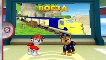 Perrito perritos rescatados de patrulla gato dibujos animados Callie sobre los coches de carreras juegos de dibujos animados
