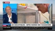 Citronnelle, bracelet anti-moustiques, ultrasons : inutiles contre les moustiques !