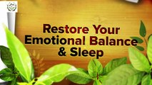 What Are The Best Menopause Herbs   Natural Remedies for Hot flash & Sleep