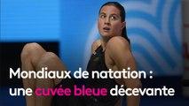 Mondiaux de natation : une cuvée bleue décevante