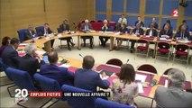 Michel Mercier : une nouvelle affaire d'emploi familial fictif ?