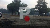 Istres : plusieurs voitures brûlées lors de l'incendie de Lavalduc