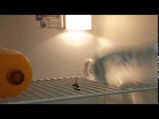 Fika Dika - Como apoiar garrafas na geladeira