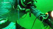 Scuba fisherman finds live fish inside a larger fish