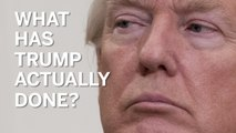 What has Donald Trump actually done so far?
