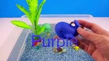 Et les couleurs poisson pour apprentissage des noms nombres réal Mer avec Animal aqua bots k