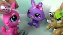 Bébés Barres Bonbons maman plus film ne dans aucun partie animal de compagnie séries Boutique Maman 17 littlest lps subscri