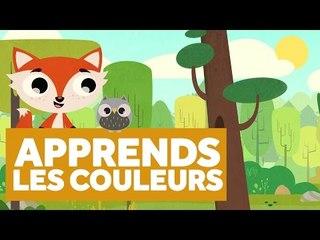 Apprendre Les Couleurs de la Forêt - L'École des Zibous ! Vidéo Educative