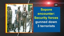 Sopore encounter: Security forces gunned down 3 terrorists
