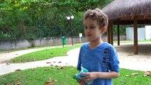 Balle des œufs enfants n / A porc piscine fosses jouet polka dot chasse œufs enfants Peppa surprennent