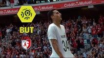 But Anwar EL GHAZI (70ème) / LOSC - FC Nantes - (3-0) - (LOSC-FCN) / 2017-18
