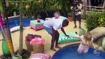 'Bachelor In Paradise' Trailer Reveals Corinne & DeMario Pool Hookup