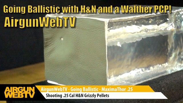 Airgun Hunting With  25 Caliber Hollowpoint Slugs | Utah
