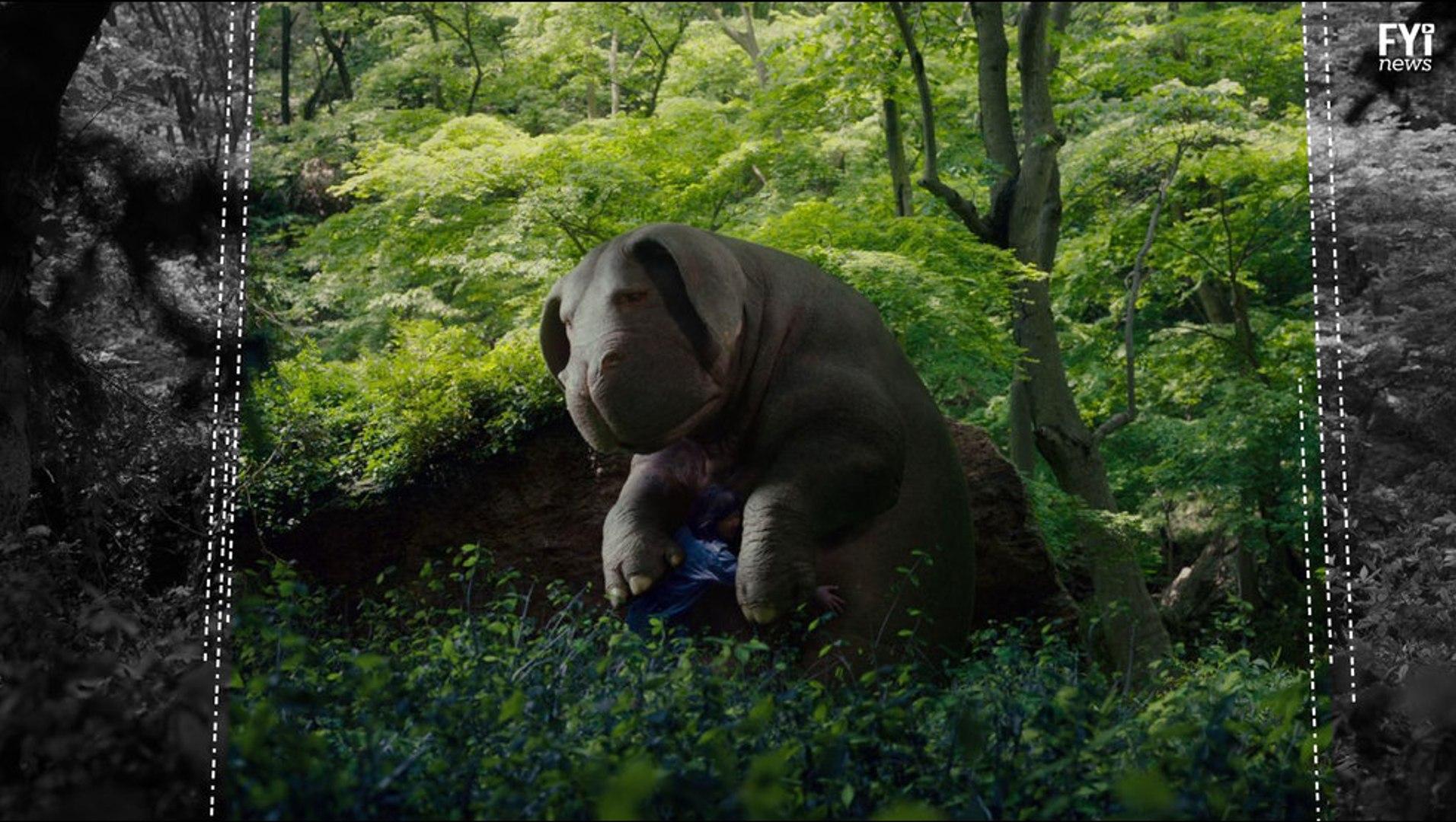 Okja Goes to Netflix