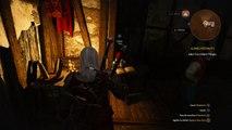 The Witcher 3: Wild Hunt bug définitivement bloqué dans la jeux