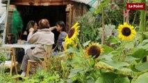 Jardin partagé : quel est le principe ?