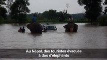 Mousson au Népal: des touristes évacués à dos d'éléphants