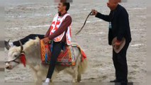 Damxung horse festival in Tibet brings high jinks and high notes to the high plateaux