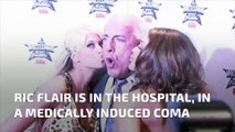 Wrestling legend Ric Flair in medically induced coma