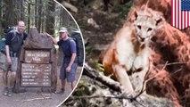 Pendaki VS Singa gunung; cara agar selamat ketika bertemu singa gunung - TomoNews