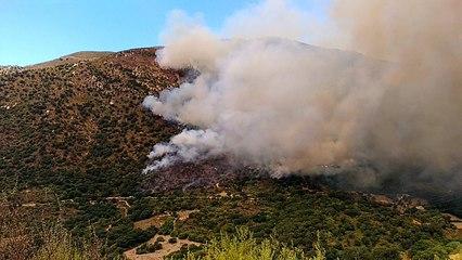 Vidéo. Incendie en cours à Loreto di Tallano