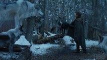 Peter Dinklage Asks 'Game of Thrones' Fans Not to Buy Huskies | THR News