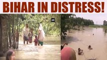 Bihar floods: Death toll rises to 56, NDRF teams rush to the state | Oneindia News