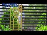 Myanmar Tv   Myint Myat, Soe Myat Thuzar, Nan Htate Hter Part 1 07 Sep 2000