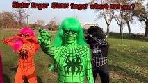 Et les couleurs poupée colorant la famille doigt cheveux Apprendre sucettes garderie homme araignée super-héros barbie rh