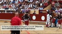 Peter Janssen, le militant anti-corrida qui bouscule les arènes