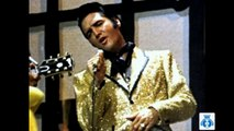 Metamorphosis of Elvis Presley & Old Friend by Bill Medley (Elvis)