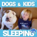 Dogs and Kids Falling Asleep