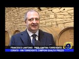 CORATO   Vini Torrevento, campioni qualità prezzo