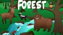 Animaux enfants pour forêt de enfants enfants dâge préscolaire chansons orthographe vidéo animal