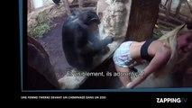 Une femme twerk pour des singes dans un zoo (Vidéo)