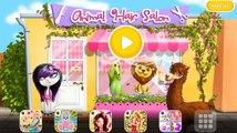 Cheveux joyeux pour salon animaux / coiffeur dessin animé animaux jeu